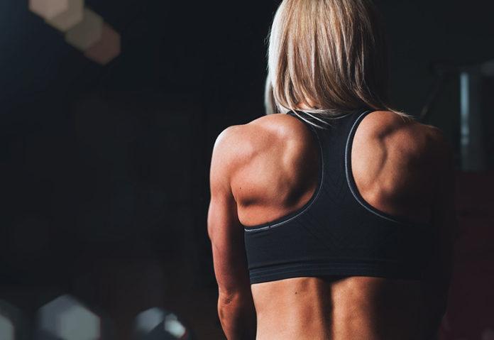 Muskelaufbau an Schultenr und Nacken